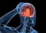 Brainstorm: Head Injuries and the NFL, Part 2: A History of Terms – CTE and Concussion by John J. Medina Ph.D.